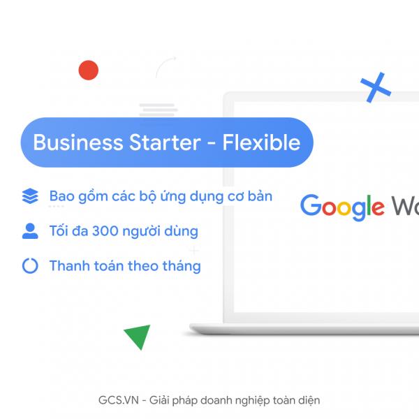Business-Starter-Flex