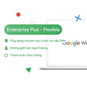 Enterprise Standard Flex 1