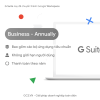 GS-Business-annualy