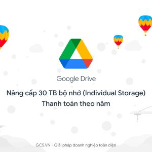 google drive individual 30TB annually
