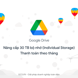 google drive individual 30TB flexible